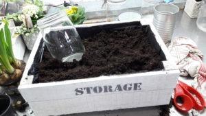 DIY mise en place des bocaux et des conserves dans la caisse en bois