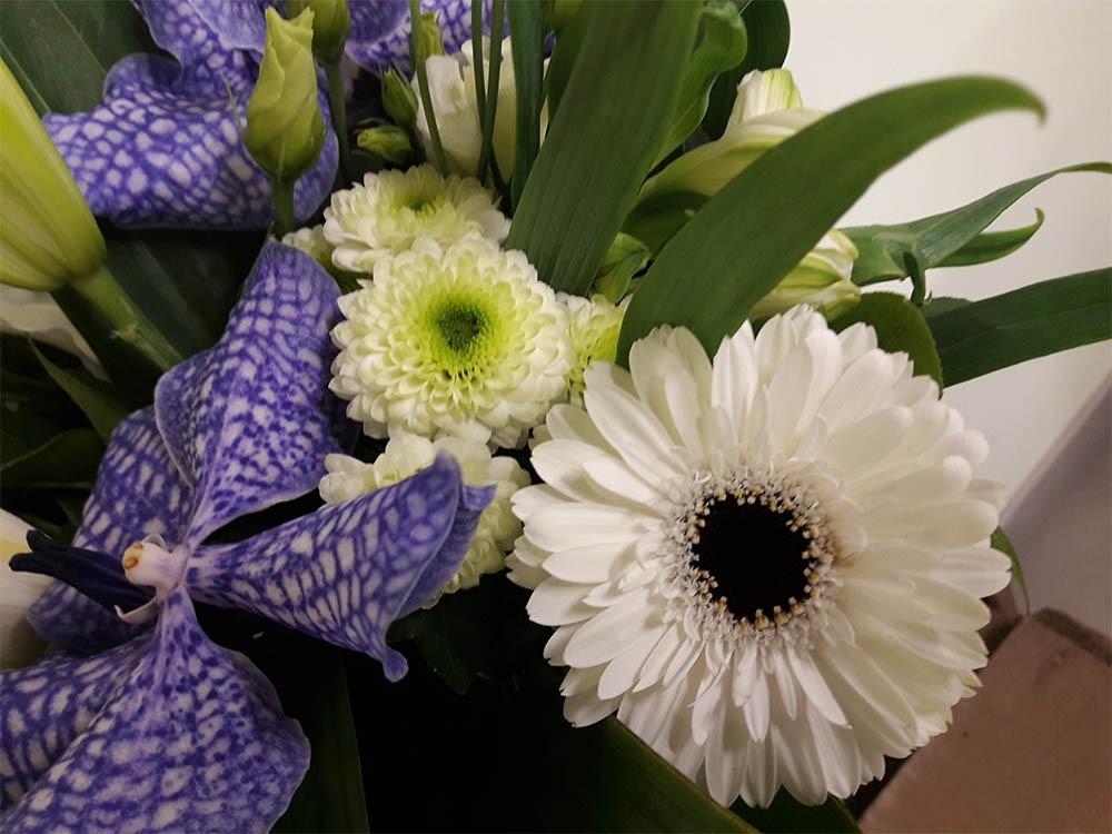 bouquet 0014 apolline2 fleurs de saison. Black Bedroom Furniture Sets. Home Design Ideas